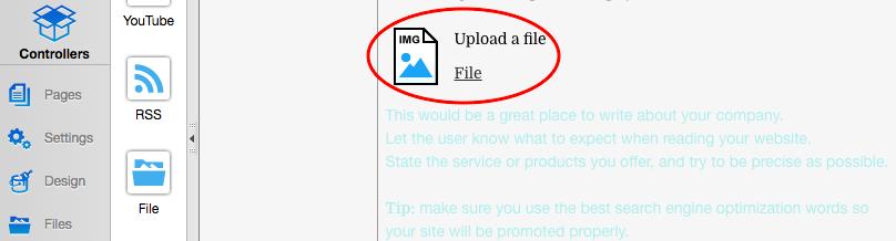 the description of the file